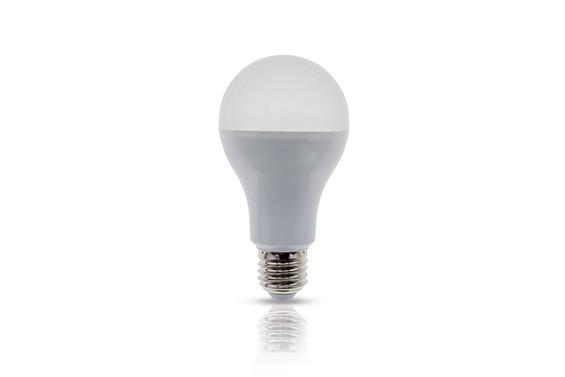 LED Bulb-G508 7W