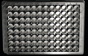 Nanofiber multiwell plate, with aligned nanofibers
