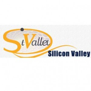 Silicon Valley for Nanotechnology