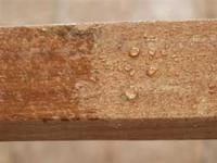 NewPro Nano Wood