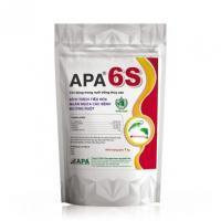 APA 6S