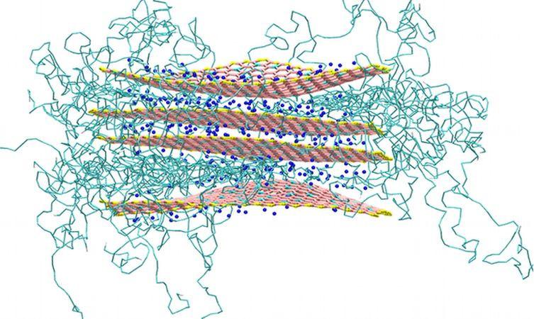 Nylon6 nanocomposite