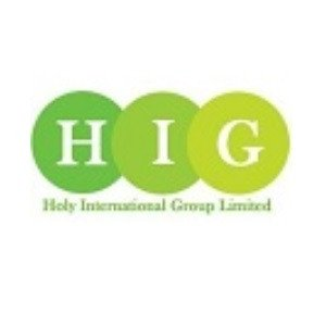 Holy International Group Limited