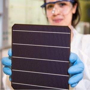 Perovskite-on-silicon Tandem Solar Modules