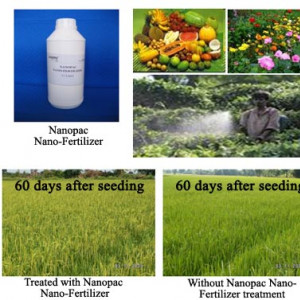 Nano-fertilizer