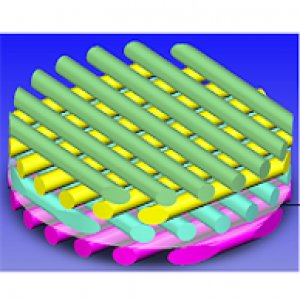 3D Insert with Nanomesh